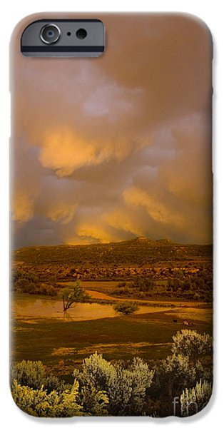 Flooding iPhone Cases - La Boca Rain iPhone Case by Jerry McElroy