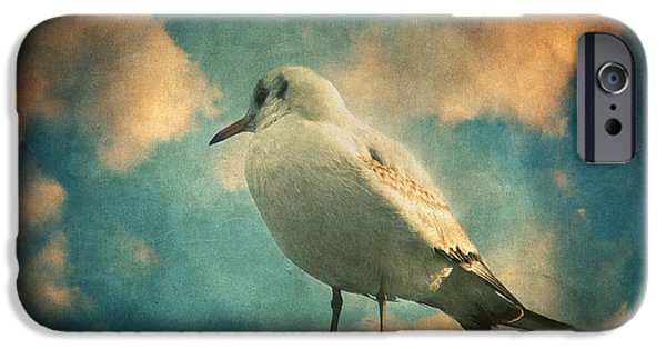 Flying Seagull iPhone Cases - La mouette iPhone Case by Taylan Soyturk