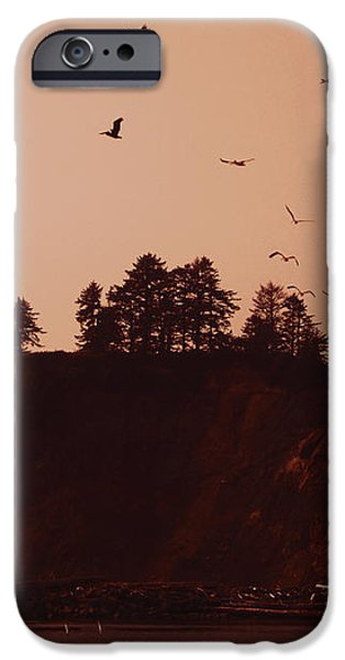 La Push Silhouette With Birds iPhone Case by Kym Backland