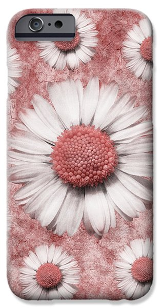 La Ronde Des Marguerites - Pink 02 iPhone Case by Variance Collections