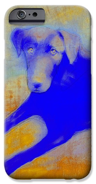 Dogs Digital Art iPhone Cases - Labrador Retriever in Blue and Yellow iPhone Case by Ann Powell