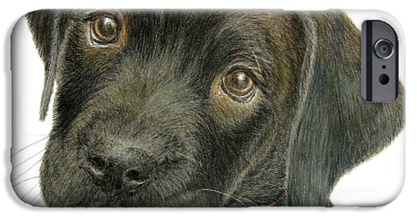 Chocolate Lab iPhone Cases - Labrador Retriever Puppy iPhone Case by Jacqueline Barden