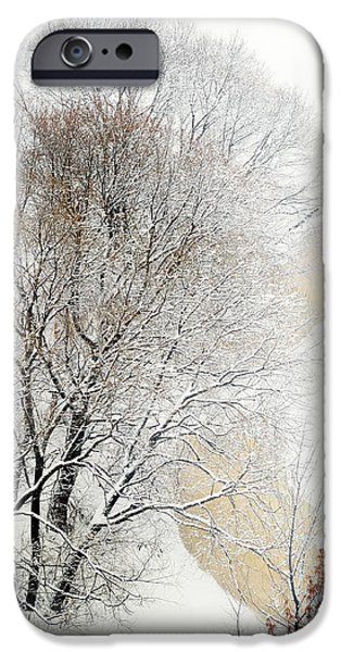 Winter Scene iPhone Cases - Lacy Winter 2 iPhone Case by Jenny Rainbow