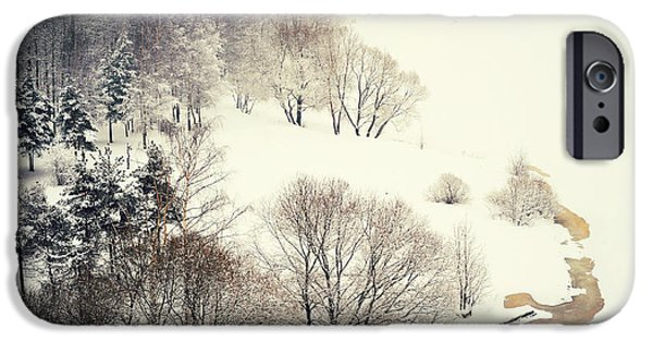 Winter Scene iPhone Cases - Lacy Winter 3 iPhone Case by Jenny Rainbow