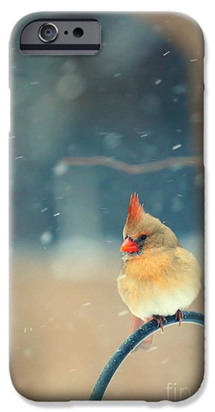 Kaypickens.com iPhone Cases - Lady in Waiting iPhone Case by Kay Pickens