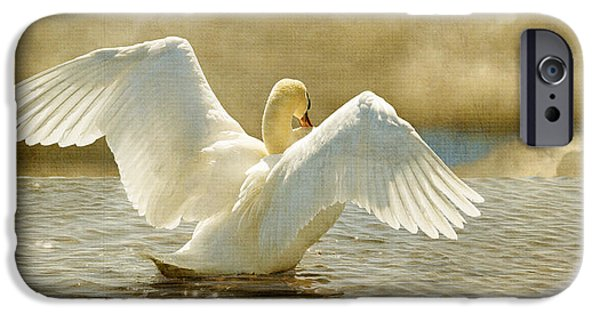 Swans... iPhone Cases - Lady-In-Waiting iPhone Case by Lois Bryan