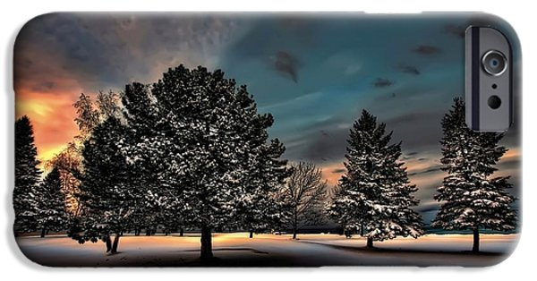 Park Scene Digital iPhone Cases - Lady winter  bringing a cold snap iPhone Case by Jeff S PhotoArt