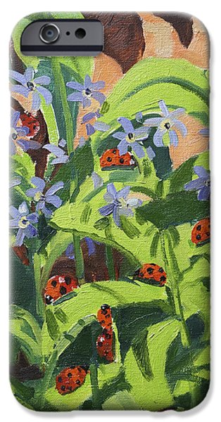 Ladybirds iPhone Case by Andrew Macara