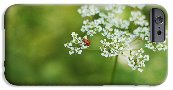 Detail iPhone Cases - Ladybug iPhone Case by Gina Dsgn