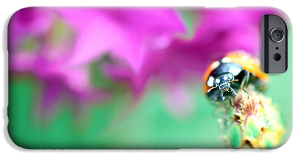 Copy Mixed Media iPhone Cases - Ladybug on beautiful bud iPhone Case by Toppart Sweden