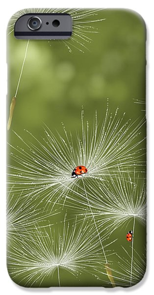 Spring iPhone Cases - Ladybug iPhone Case by Veronica Minozzi