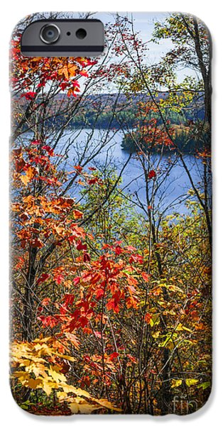 Forest iPhone Cases - Lake and fall forest iPhone Case by Elena Elisseeva
