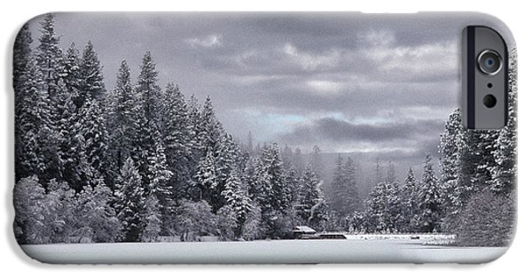 Winter Storm iPhone Cases - Lake In Winter iPhone Case by Ron Sanford