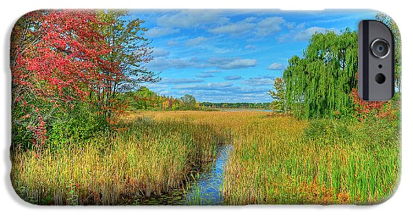 Willow Lake iPhone Cases - Lake Sixteen iPhone Case by Rodney Campbell