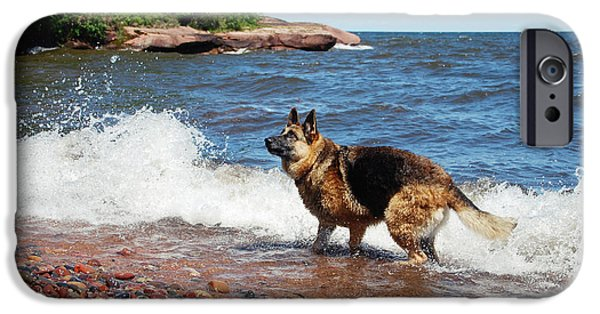 Dog In Landscape iPhone Cases - Lake Superior Fun iPhone Case by Michele Thielke