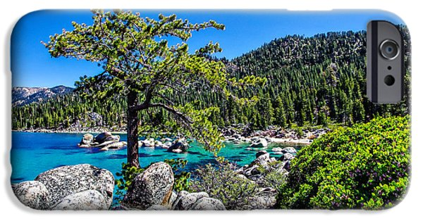 Snow-covered Landscape Photographs iPhone Cases - Lake Tahoe Bonsai Tree iPhone Case by Scott McGuire