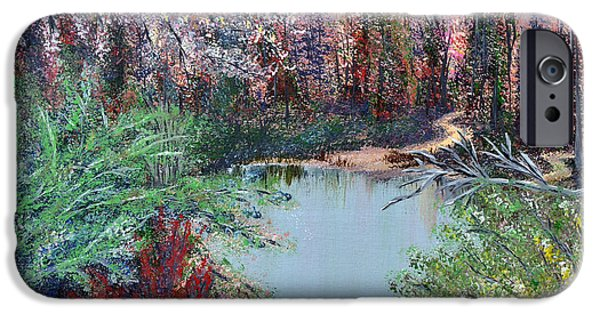 Southern Indiana iPhone Cases - Lake Tranquility iPhone Case by Alys Caviness-Gober