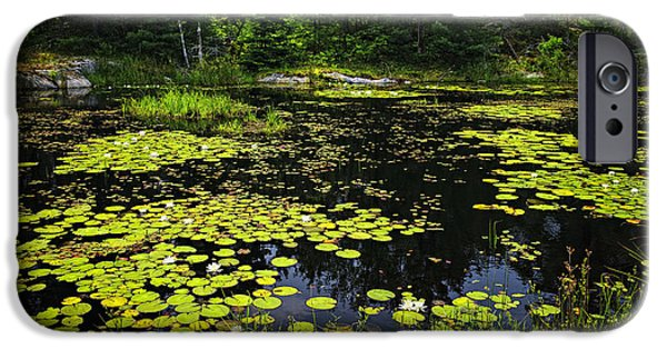 River View iPhone Cases - Lake with lily pads iPhone Case by Elena Elisseeva