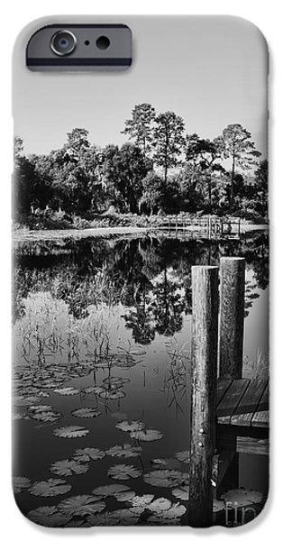 Lilly Pads iPhone Cases - Lakes of Deland iPhone Case by Deborah Benoit