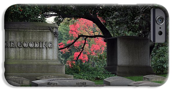 Cemetary iPhone Cases - Lakewood Cemetary in Cleveland iPhone Case by Tony Weber