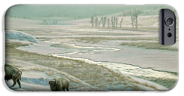 Bison iPhone Cases - Lamar Valley - Bison iPhone Case by Paul Krapf