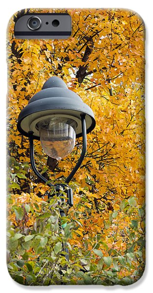 lamp in the autumn leaves iPhone Case by Michal Boubin