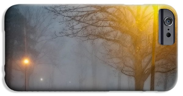 Park Scene iPhone Cases - Lamppost Snowscape iPhone Case by Chris Bordeleau