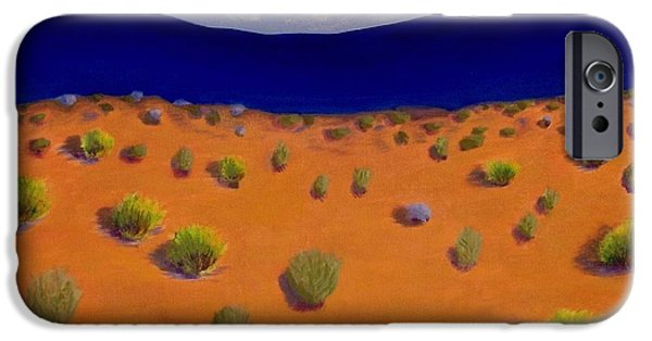 Sw New Mexico iPhone Cases - Land of Enchantment 2 iPhone Case by Elizabeth Sullivan