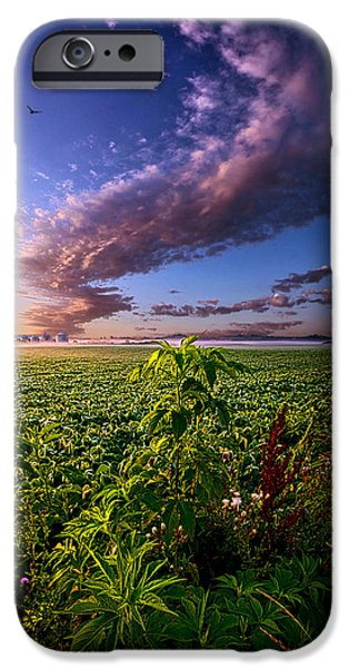 Farming Photographs iPhone Cases - Land of Plenty iPhone Case by Phil Koch