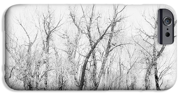 Creek iPhone Cases - Landscape e10g Taos NM iPhone Case by  Otri  park