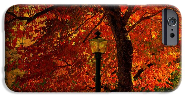 Autumn Scenes Photographs iPhone Cases - Lantern in autumn iPhone Case by Susanne Van Hulst