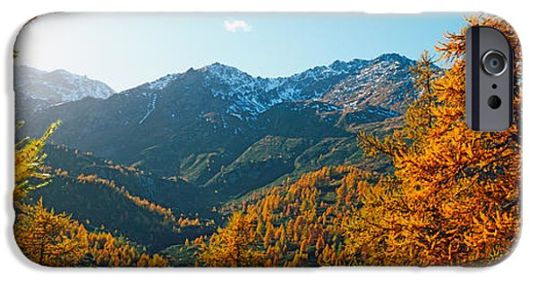 Autumn iPhone Cases - Larch Trees In Autumn At Simplon Pass iPhone Case by Panoramic Images