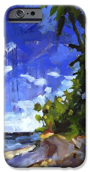 Impressionistic Landscape Paintings iPhone Cases - Las Terrenas Afternoon iPhone Case by Douglas Simonson