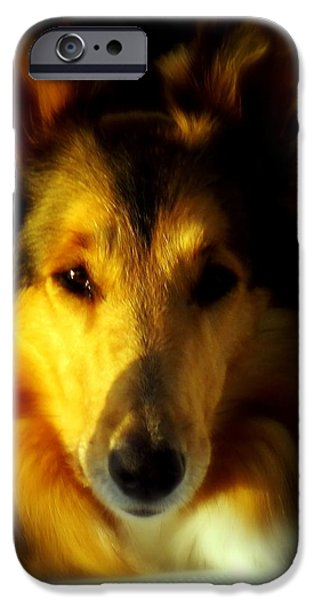 Lassie Come Home iPhone Case by KAREN WILES