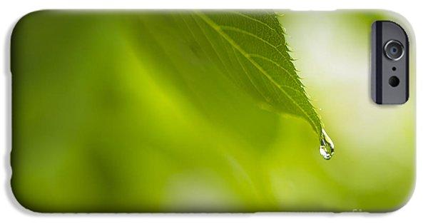 Raining iPhone Cases - Last Drop of Rain iPhone Case by Diane Diederich