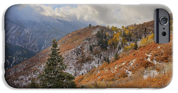 Autumn Season iPhone Cases - Last Fall iPhone Case by Chad Dutson