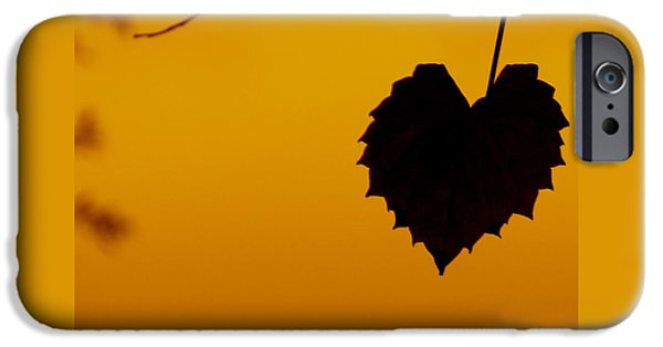 Business Photographs iPhone Cases - Last Leaf Silhouette iPhone Case by Joy Hardee