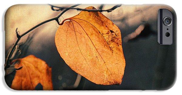 Poetic iPhone Cases - Last Leaves iPhone Case by Taylan Soyturk