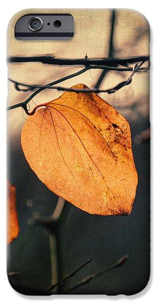 Last Leaves iPhone Case by Taylan Soyturk