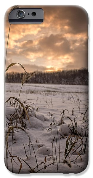 Snowy Day iPhone Cases - Last light across a winter field iPhone Case by Chris Bordeleau