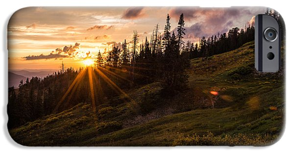 Pine Tree iPhone Cases - Last Light at Cedar iPhone Case by Chad Dutson