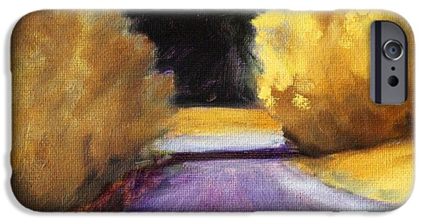 Business Paintings iPhone Cases - Last Light iPhone Case by Nancy Merkle