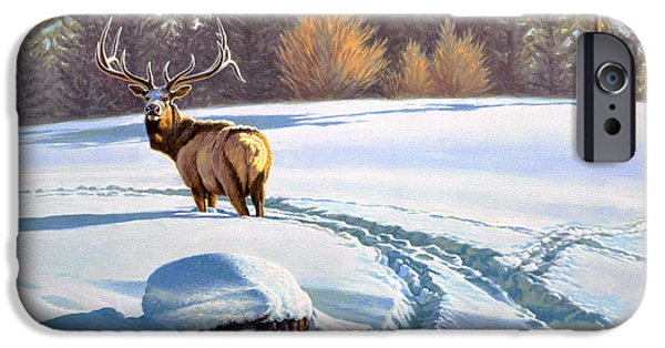 Yellowstone Park iPhone Cases - Last Look  -Elk iPhone Case by Paul Krapf