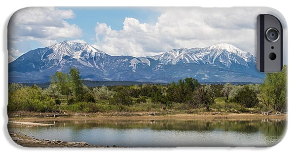 Springtime In The Park iPhone Cases - Lathrop State Park iPhone Case by Aaron Spong