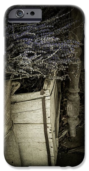 Basket iPhone Cases - Lavandula iPhone Case by Amy Weiss
