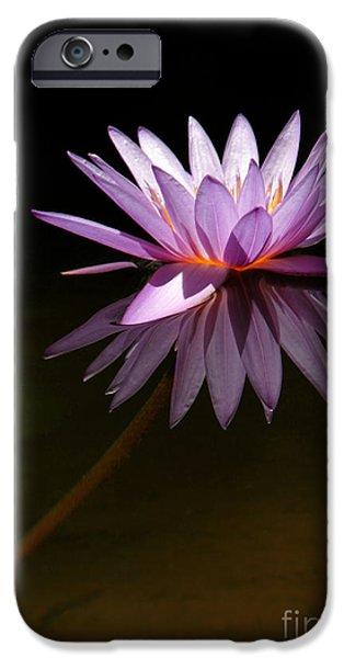 Lavendar Reflections iPhone Case by Sabrina L Ryan