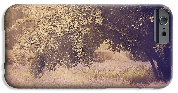 Violet Photographs iPhone Cases - Lavender Dreams iPhone Case by Amy Weiss