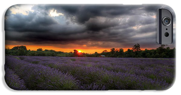 Beauty Mark iPhone Cases - Lavender Field at Sunset  iPhone Case by Mark Ruti
