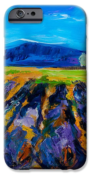 Lavender field iPhone Case by Elise Palmigiani