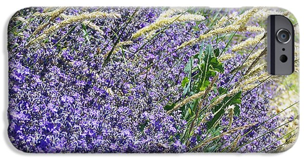 Lavender Pyrography iPhone Cases - Lavender Field in Provence iPhone Case by Betsy Moran